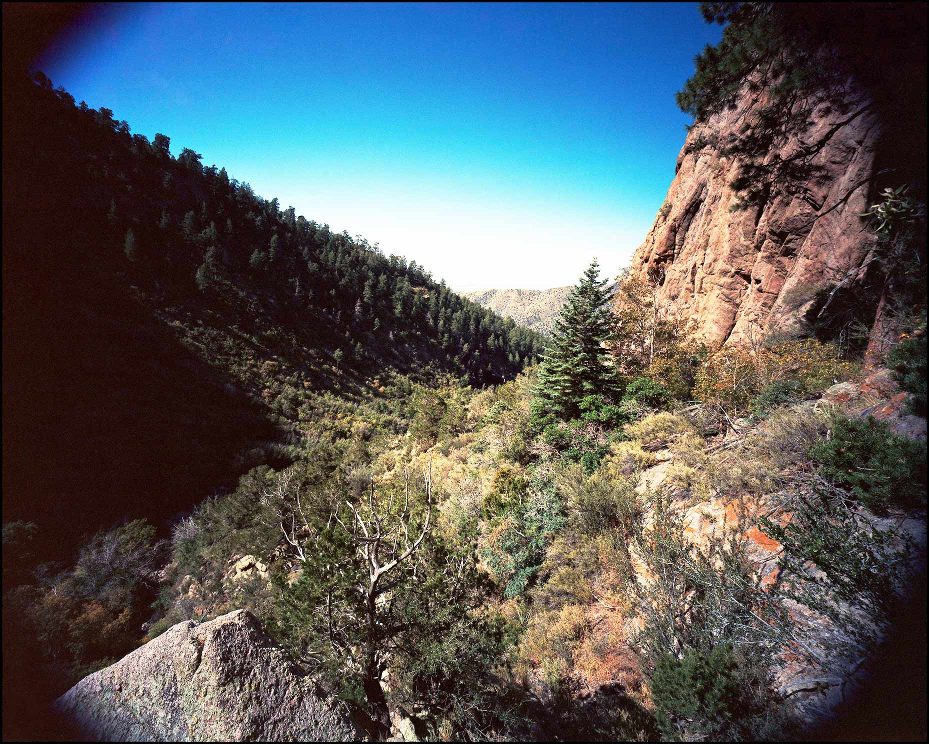 Sandia-Mountains_Fletcher-Trail-2_1